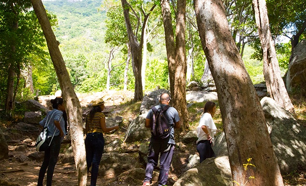Ritigala forest monastery with a local guide - Experience - Sri Lanka In Style