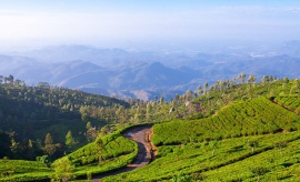 Haputale - Sri Lanka In Style