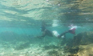 Snorkeling by the lighthouse with a local diver - Galle Fort Hotel - Sri Lanka In Style
