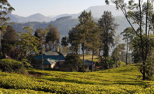 Ceylon Tea Trails - Norwood - Sri Lanka In Style