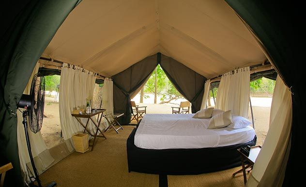 Leopard Trails - Yala - Sri Lanka In Style
