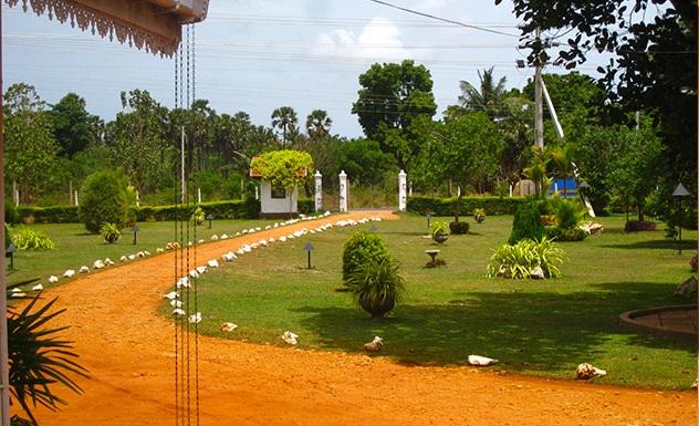 The Margosa - Sri Lanka In Style