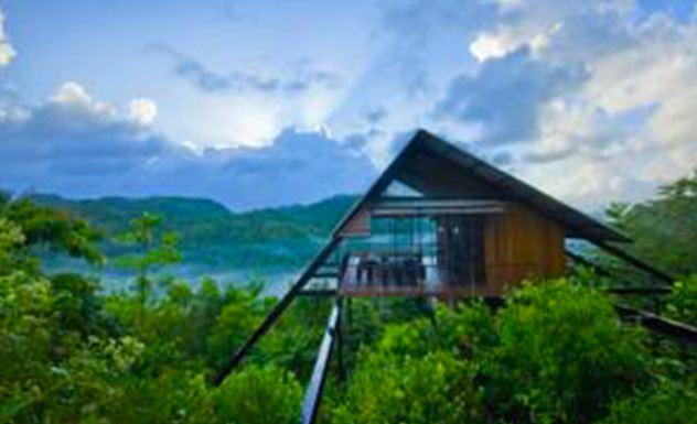 The Ark - Sri Lanka In Style