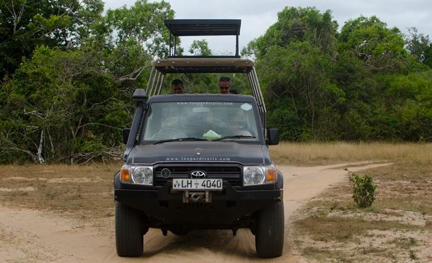 Leopard Trails Wilpattu - Sri Lanka In Style
