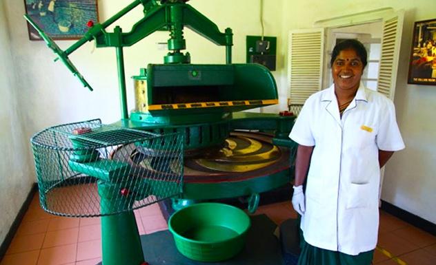 Heritance Tea Factory - Sri Lanka In Style