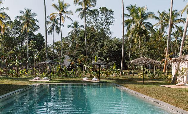 PALM - Sri Lanka In Style