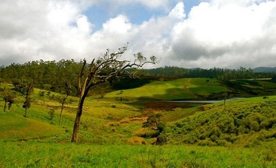 A visit to Horton Plains - Nuwara Eliya -  Sri Lanka In Style