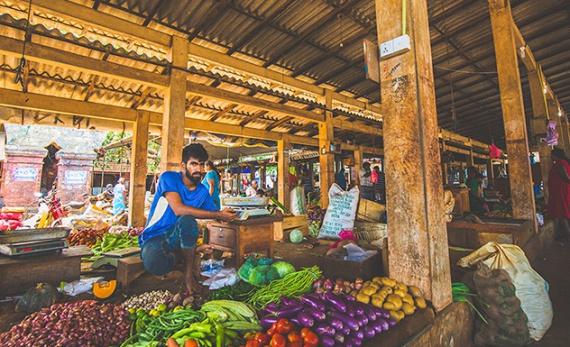 Depths of Jaffna - Jaffna -  Sri Lanka In Style