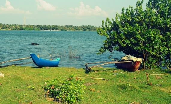 Fishing by catamaran on the Batticaloa Lagoon - Batticaloa -  Sri Lanka In Style