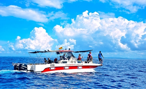 Whale watching by private speedboat – mirissa - Mirissa -  Sri Lanka In Style