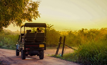 Into the Wild -  Sri Lanka In Style