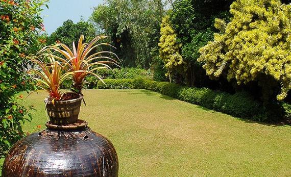 Brief Garden by Bevis - Bentota -  Sri Lanka In Style